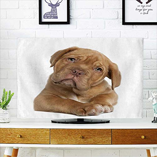 Bordeaux Outdoor Wall - PRUNUS Cord Cover for Wall Mounted tv Dogue de Bordeaux Puppy,Weeks Old,Lying in Front of White Background Cover Mounted tv W19 x H30 INCH/TV 32
