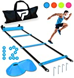Pro Agility Ladder and Cones - 15 ft Fixed-Rung Speed Ladder with 12 Disc Cones for Soccer, Football, Sports, Exercise, Workout, Footwork Training - Includes 4 Metal Stakes and Heavy Duty Carry Bag
