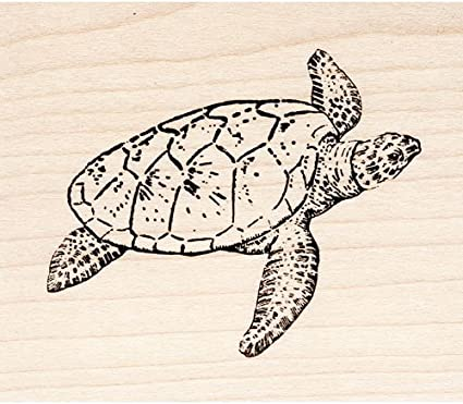 Adorable Sea Turtle Rubber Stamp Mounted Wood Block Art Stamp