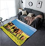Vanfan Design Home Decorative Elephants family and herd on African savanna Safari in Amboseli Kenya Africa Modern Non-Slip Doormats Carpet for Living Dining Room Bedroom Hallway Office Easy