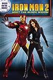 Iron Man 2: Meet the Black Widow by Guido Guidi (Illustrator) (7-Apr-2010) Paperback