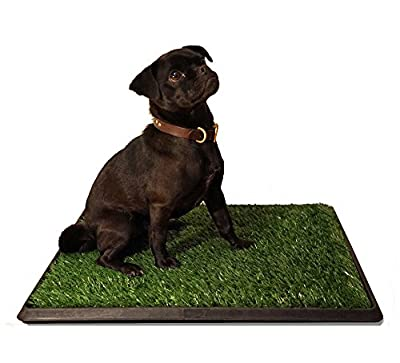PUPPYPRO Puppy Dog Potty Toilet Training Tray LARGE 20 x 25 Inches | The Ultimate Puppy Dog Toilet Trainer for Indoor Outdoor Use | Grass Tray Pad Tray for House Training Puppies & Pets