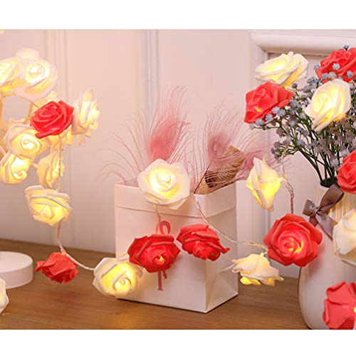 (Indoor String Red Rose Lights, 20 Led Battery Operated Flower Hanging Lights for Valentine's Day Wedding Anniversary Spring Party Decorations, Teen Girls Bedroom Decor, Gift Idea (Red + White))