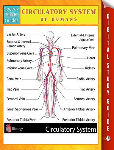 Human Circulatory System - Circulatory System Of Humans Speedy Study Guides