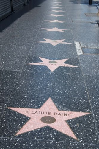 Hollywood Walk of Fame Journal Star: 150 page lined - Blvd Los Angeles Hollywood