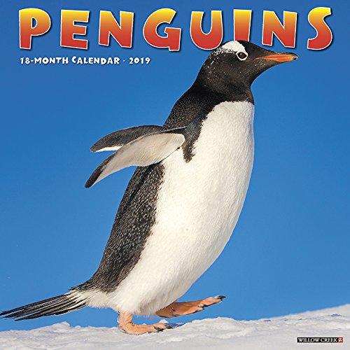 Penguins 2019 Wall Calendar