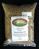 Ethiopian Harrar unroasted Coffee Beans (5LB)