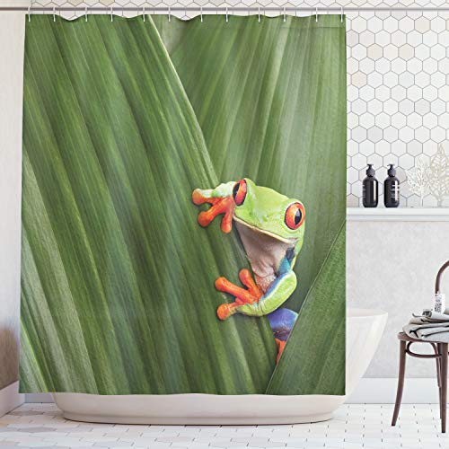 - Ambesonne Animal Decor Collection, Red Eyed Tree Frog Hiding in Exotic Macro Leaf in Costa Rica Rainforest Tropical Nature Photo, Polyester Fabric Bathroom Shower Curtain Set with Hooks, Green