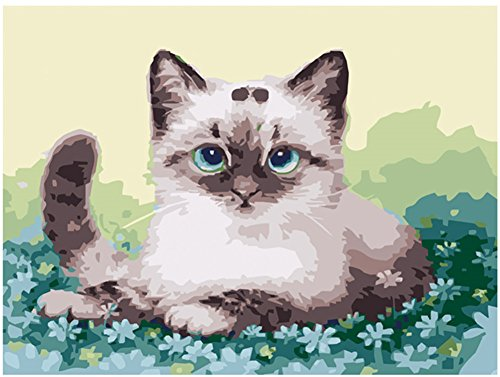 Diy Oil Painting Paint by Number Kit for Adults Beginner 16x20 inch - Cat Lying on Flower, Drawing with Brushes Christmas Decor Decorations Gifts (Without Frame)