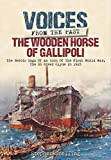 img - for Voices from the Past: The Wooden Horse of Gallipoli: The Heroic Saga of SS River Clyde an Icon of the First World War by Stephen Snelling (2016-02-28) book / textbook / text book