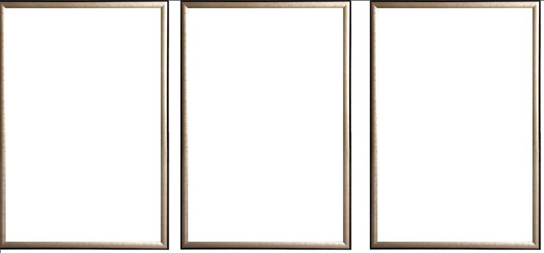 Three(3) Wood Metallic Gold Finish Poster Frame 24x36 or 36 x 24