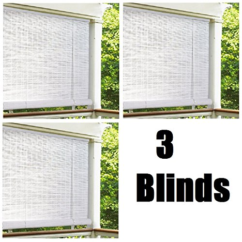"Lewis Hyman 0320166 72"" x 72"" White Roll Up PVC Porch Patio Lanai Blind - Quantity 3"