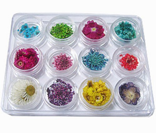 Nail Art Real Dried Flower Kit Set