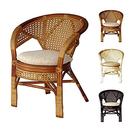 512uasdmsLL._SS450_ Wicker Dining Chairs