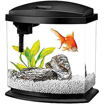 Aqueon LED MiniBow Aquarium Starter Kits with LED Lighting, 2.5 Gallon