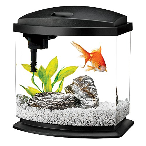 Aqueon LED MiniBow Aquarium Starter Kit with LED Lighting, 2.5 Gallon, Black
