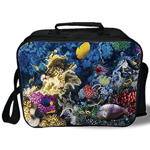 (Insulated Lunch Bag,Ocean,Colorful Coral Reef and Fishes Colony in Red Sea Egypt Africa Underwater Life Image,Multicolor,for Work/School/Picnic, Grey)