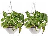 Garden Pots 2pcs, Petforu Hanging Flower Basket EMPTY Flowerpot Plant Hooks Hangers - WHITE