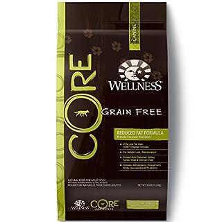 Wellness CORE Natural Grain Free Dry Dog Food, Reduced Fat, 26-Pound Bag (B000VTQB6W) | Amazon price tracker / tracking, Amazon price history charts, Amazon price watches, Amazon price drop alerts