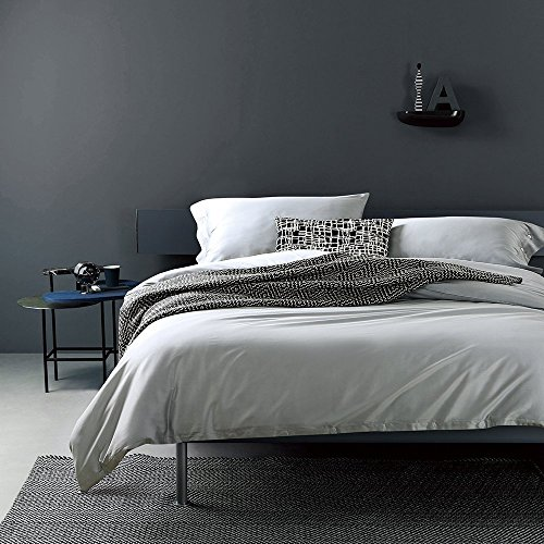 (Solid Color Egyptian Cotton Duvet Cover Luxury Bedding Set High Thread Count Long Staple Sateen Weave Silky Soft Breathable Pima Quality Bed Linen (King, Frost))