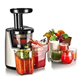 Flexzion Cold Press Juicer Machine - Masticating Juicer Slow Juice Extractor Maker Electric Juicing Vertical Stand for Fruit, Vegetable, Greens, Wheat Grass & More with Big Cup & Juicing Bowl