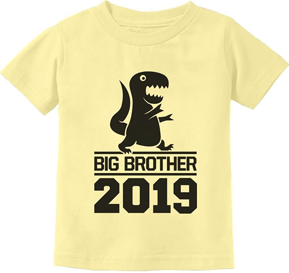 Tstars Gift for Big Brother 2019 Siblings Gift Toddler//Kids Sweatshirt