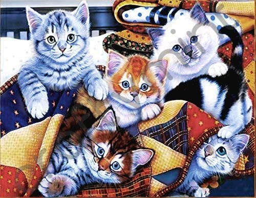 ZHENC 5D DIY Full Square Diamond Painting Cat Sleep on Bookshelf Landscape Embroidery Full Drill Craft Decor Cross Stitch Kits