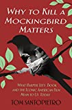 img - for Why To Kill a Mockingbird Matters: What Harper Lee's Book and America's Iconic Film Mean to Us Today book / textbook / text book