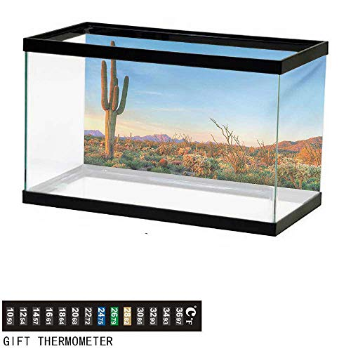 wwwhsl Aquarium Background,Saguaro,Sun Goes Down in Desert Prickly Pear Cactus Southwest Texas National Park,Orange Blue Green Fish Tank Backdrop 60