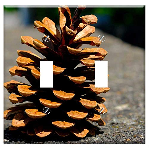 Switch Plate Double Toggle - Pine Cones Pine Tree Tap Close Conifer Macro 1