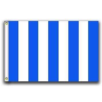 Amazon.com: MCCOCO - Banderines verticales de rayas azules y ...