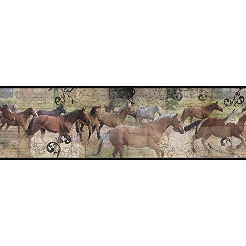 York Wallcoverings Pony Express Border, Browns, Black, Cream, Teal