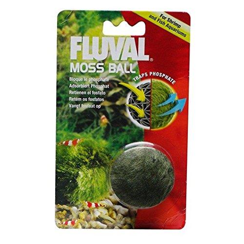 - Fluval Moss Ball