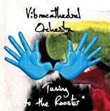 Tuning to the Rooster by Vibracathedral Orchestra