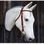 Bridle Buddy Life Size Display Horse Head Mannequin