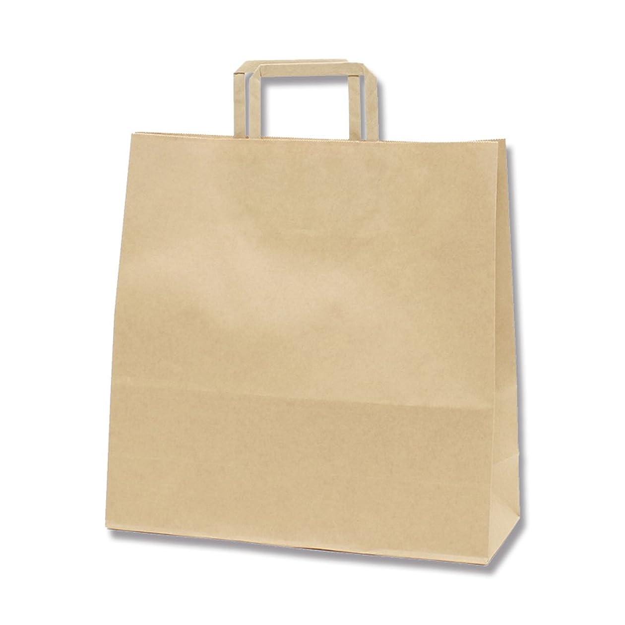 キノコ喉が渇いた皮肉ヘイコー 手提 紙袋 平手紐 H25CB 20-1 未晒 クラフト 20x9x24cm 50枚