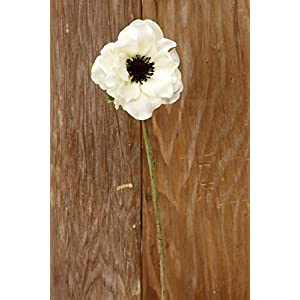 Wayfair Cream White Silk Anemone Flowers 15in 119