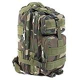 Outdoor Sport Military Tactical Backpack Molle Rucksacks Camping Hiking Trekking Bag