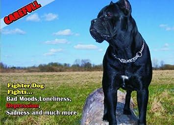 Amazon.com: Atención – cuidado con/Fun Sign perro Cane Corso ...