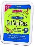 Cat-About by MiracleCorp Gimborn Multi-CatNip Plus, 150-Gram