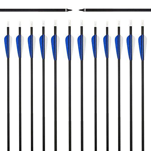 Arrows 2' Blazer Vanes - Best-selling 31