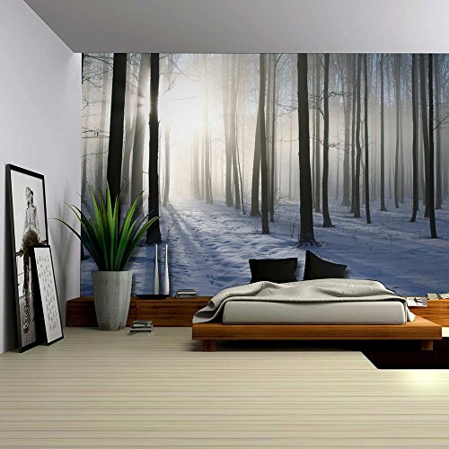 A Blanket of Snow in the Forest at Winter Time Wall Mural