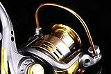 Agile-Shop Spinning Fishing Reel Metal Spool 6bb for Freshwater Saltwater 500 1000 2000 3000 4000 5000 6000 Series (2000 Series)
