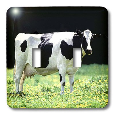 lsp_624_2 Farm Animals - Holstein Cow - Light Switch Covers - double toggle switch