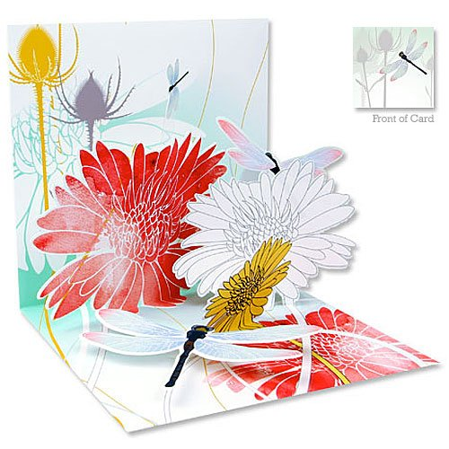 Dragonfly Card Designs - 4