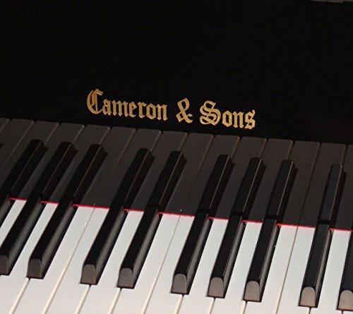 Cameron Piano Baby Grand Piano, Ebony Black,