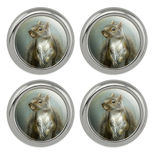 Mischievous Squirrel Metal Craft Sewing Novelty Buttons - Set of 4 ()