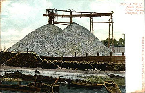 James River Oyster Shells Hampton, Virginia Original Vintage Postcard