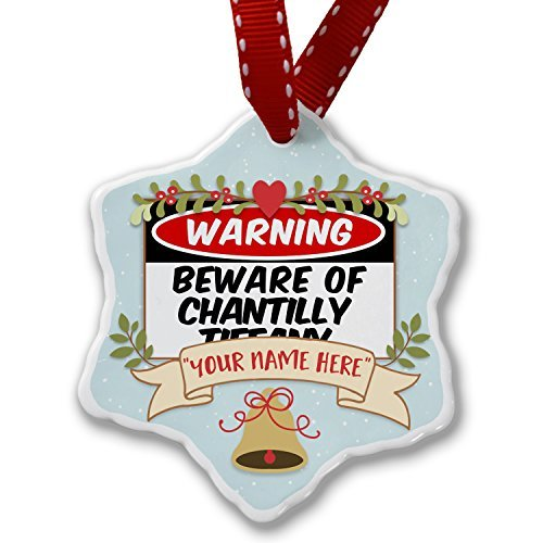 Custom Christmas Ornament Add Your Own Custom Name Beware Of The Chantilly Tiff-Cats Cat From United States Ornaments Craft for Women Xmas Gifts Tree - Tiff Cat