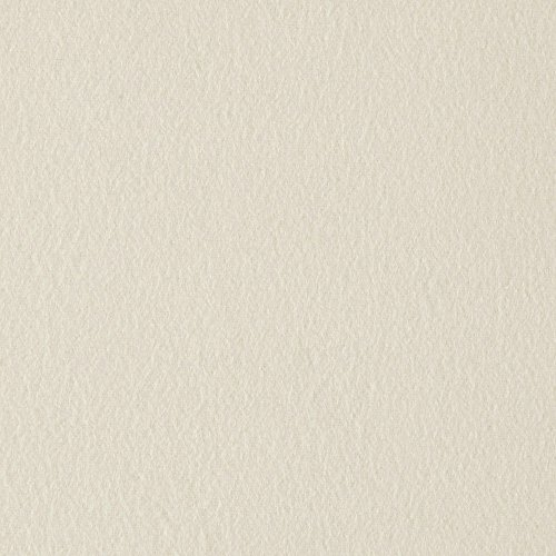 Michael Miller Flannel Solid Cream Fabric by The Yard (Cream Fabric Flannel Cotton)